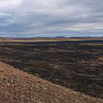 Вулканично поле