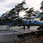 Езерото Рока